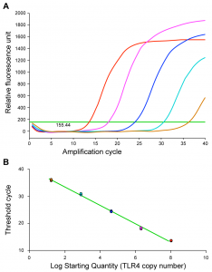 (A) Amplification chart showing threshold and (B) standard curve for the TLR4 standard dilution series in the bovine TLR4 mRNA qPCR assay.
